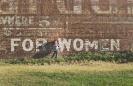 Frauen_Karriere_1